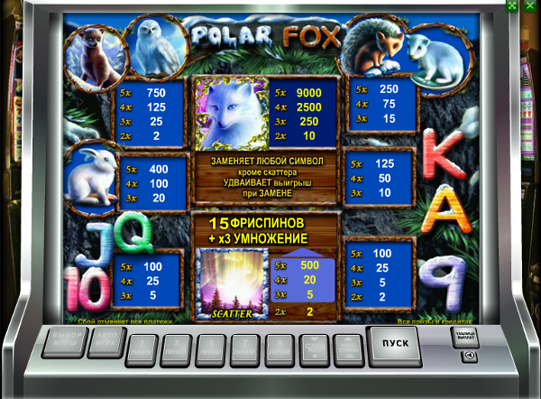 Polar fox - получай выгоду