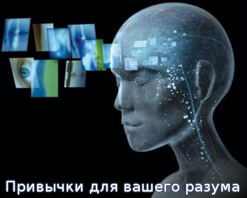 Привычки для вашего разума